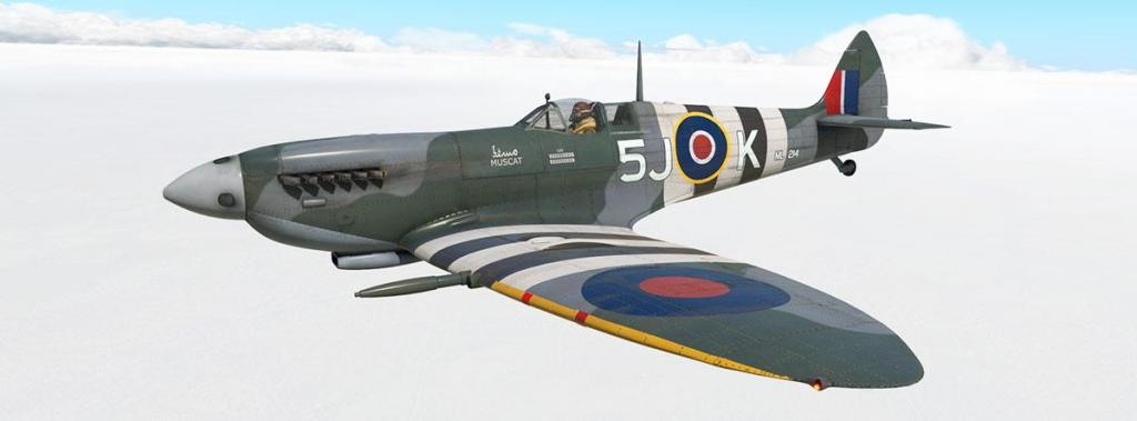 Spitfire L.F.Mk IXc_Livery_Muscat.jpg